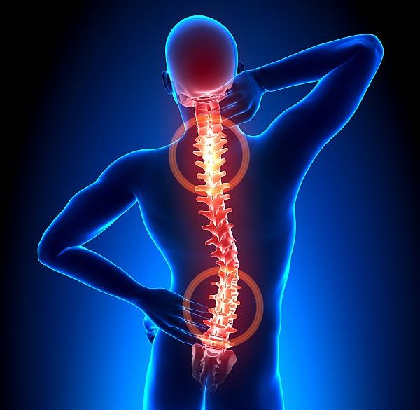 back pain skeleton red spine pain