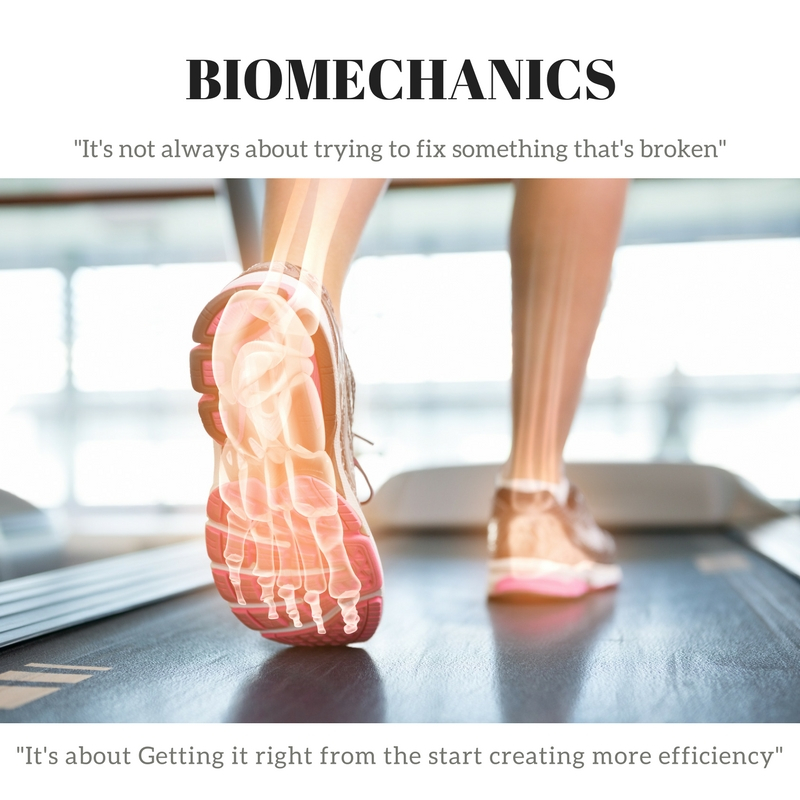 Chelmsford Biomechanics