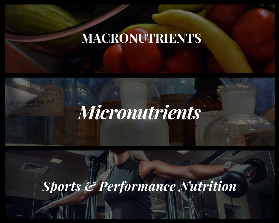 macronutrients and micronutrients sports performance nutrition